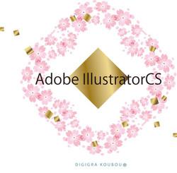 21illustratorcs_2