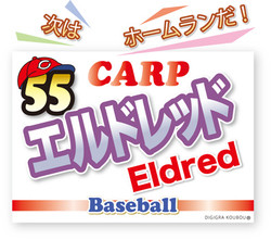 55eldred